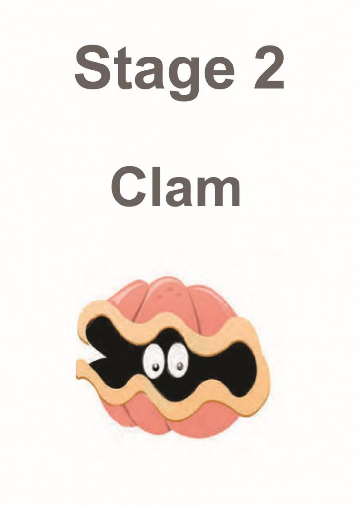 stage 2 clam