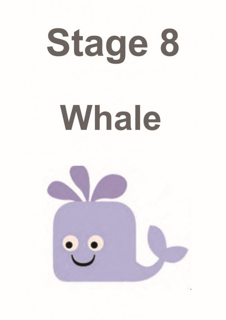 stage 8 whale